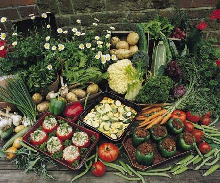 how_to_prepare_your_vegetable_garden
